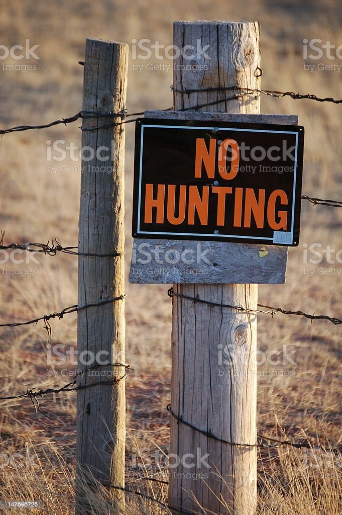 Protected Animals stock photo