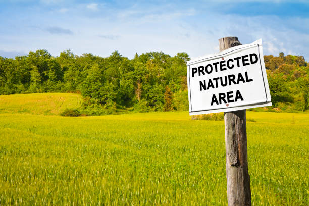 """""""protected natural area"""" written on a field sign - image with copy space - wildlife conservation stock photos and pictures"""