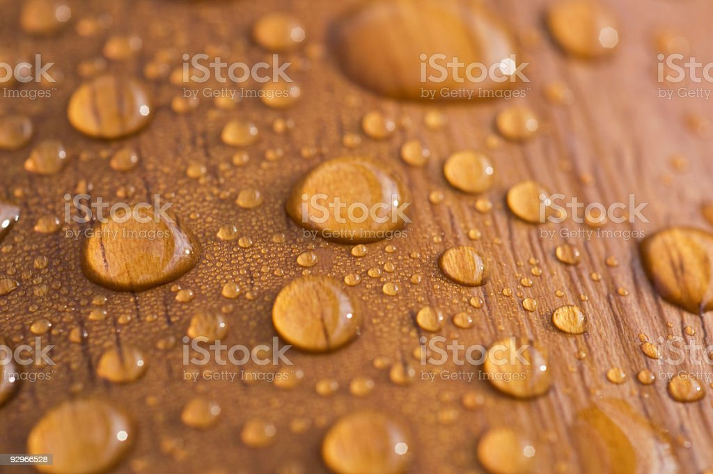 Protected wood after rain stock photo