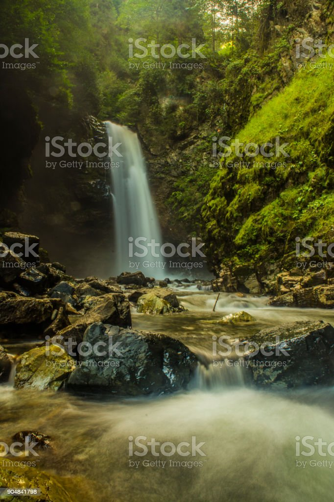 Protection of natural life stock photo