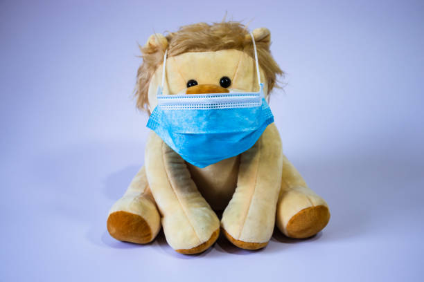 Protective medical face mask wearing stuffed lion toy picture id1226279568?b=1&k=6&m=1226279568&s=612x612&w=0&h=4hskm1dctk 5gvd1suidk4uadr9e9miyusxj7wbukc0=