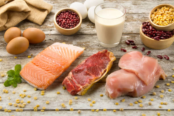 protein foods - protein stock photos and pictures