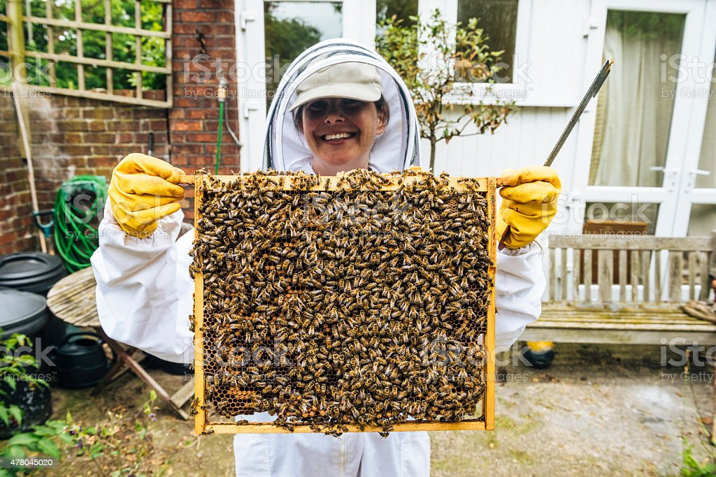 Proud apiarist with bees and honeycomb from hive stock photo