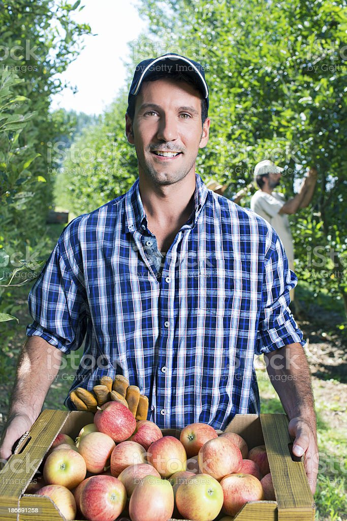 Proud farmer stock photo