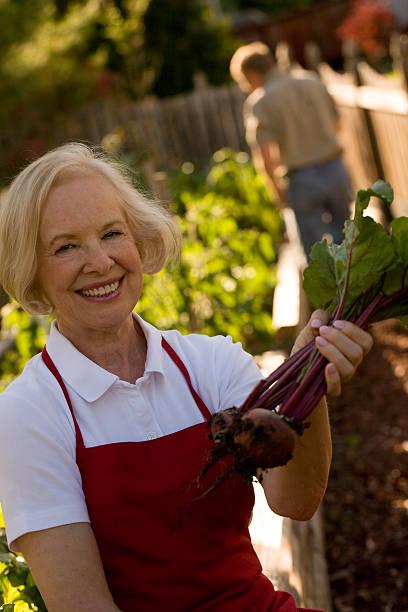 proud gardener - foto's van hands stockfoto's en -beelden