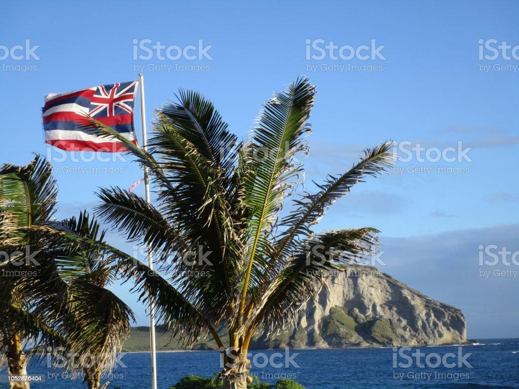 Uma orgulhosa herança havaiana - foto de acervo