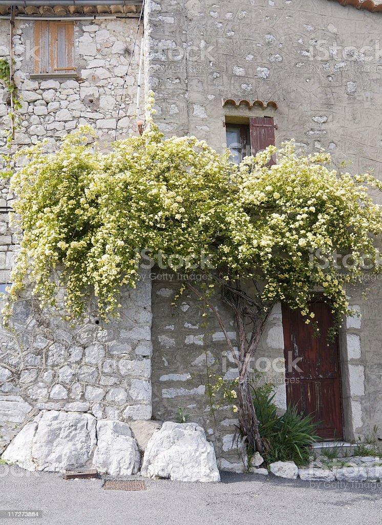 Provence royalty-free stock photo