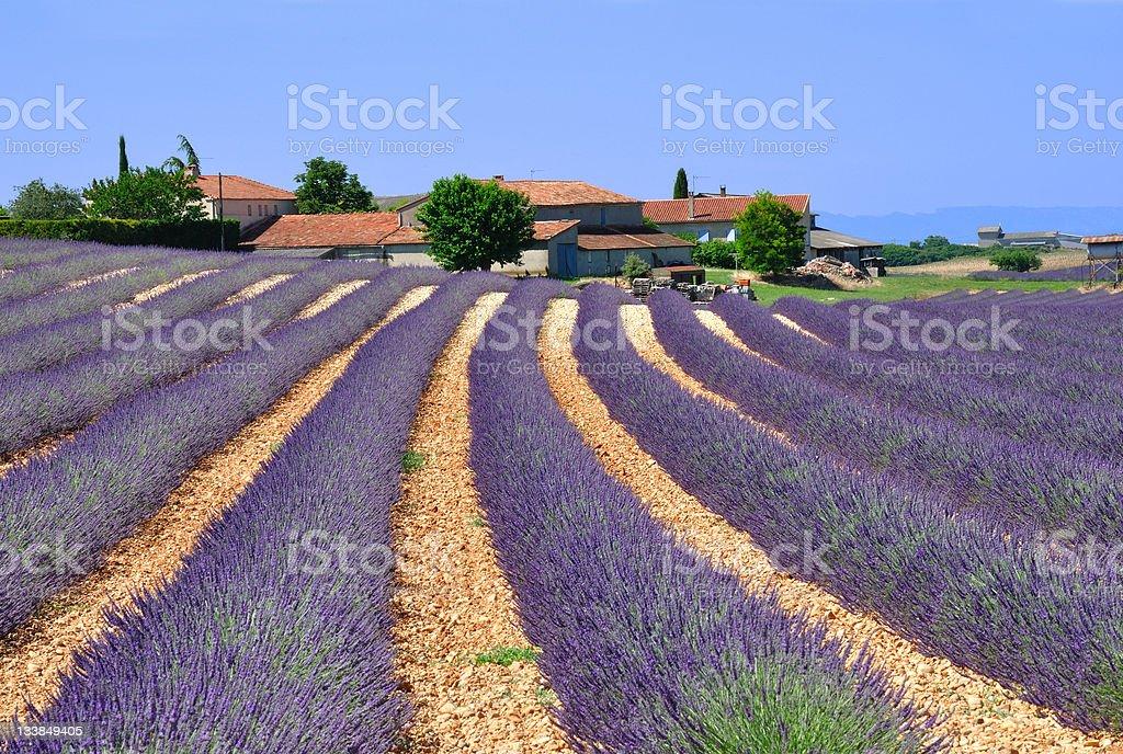 provence stock photo