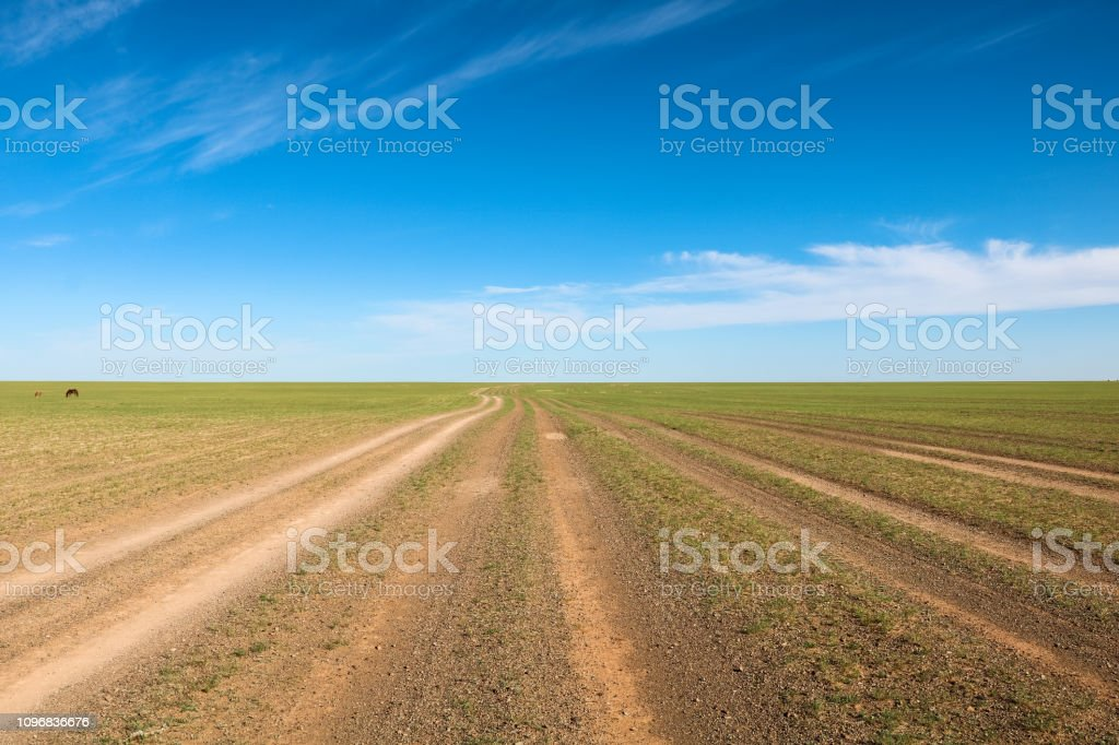 Provisional road tracks through plain landscape with perfect blue sky and few clouds (Gobi Desert, Mongolia, Asia) stock photo