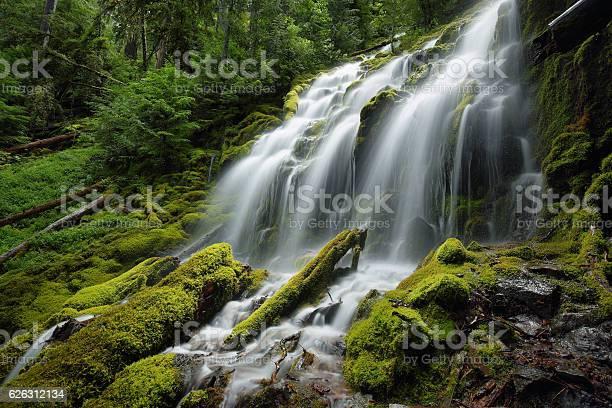Photo of Proxy falls, Oregon