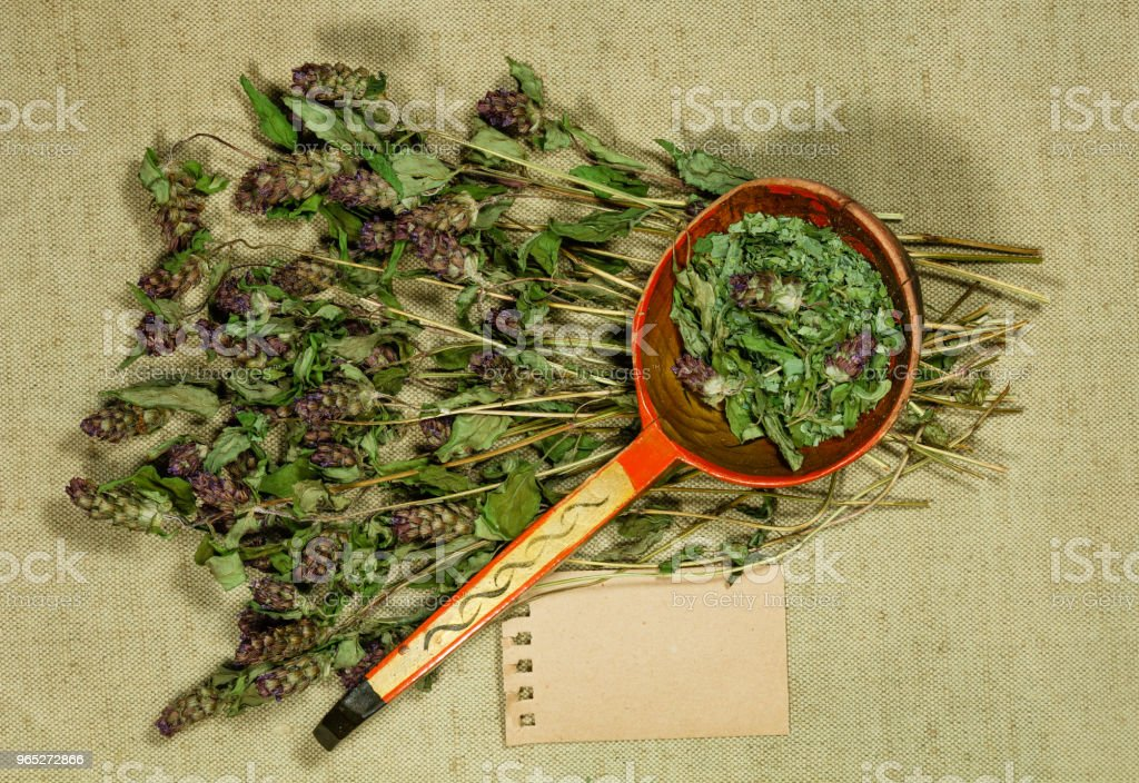 Prunella vulgaris. Dry herbs. Herbal medicine, phytotherapy medicinal herbs. royalty-free stock photo