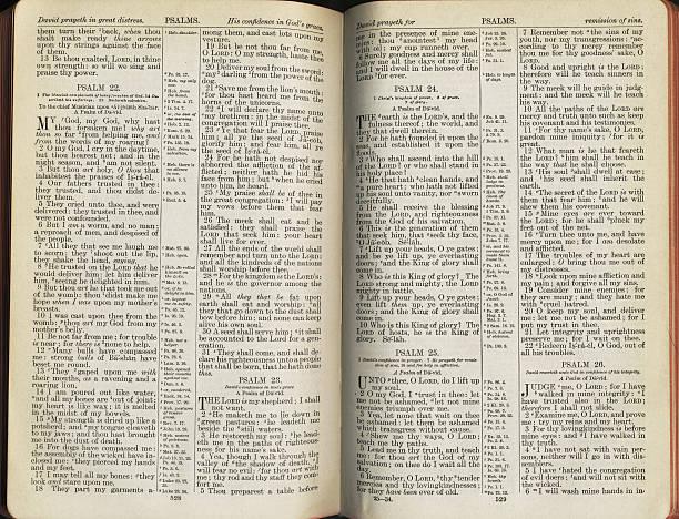 psalm buchen - psalm stock-fotos und bilder