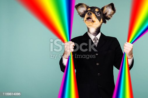 istock Psychedelic collage combining a man in a suit and a dog's head. The character holds a rainbow in his hands and looks up. The mouth is open in surprise. 1159614095