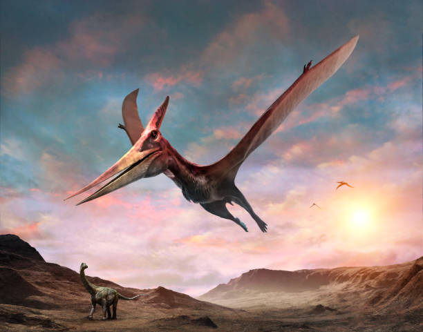 pteranodon szene 3d illustration - dinosaurier stock-fotos und bilder