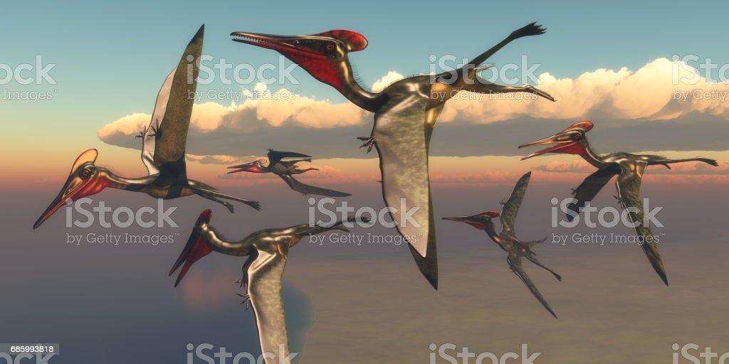 飛行中のプテロダクティルス翼竜 - アメリカ合衆国のストックフォトや ...