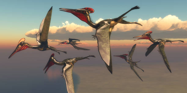 Pterodactylus Pterosaurs in Flight stock photo