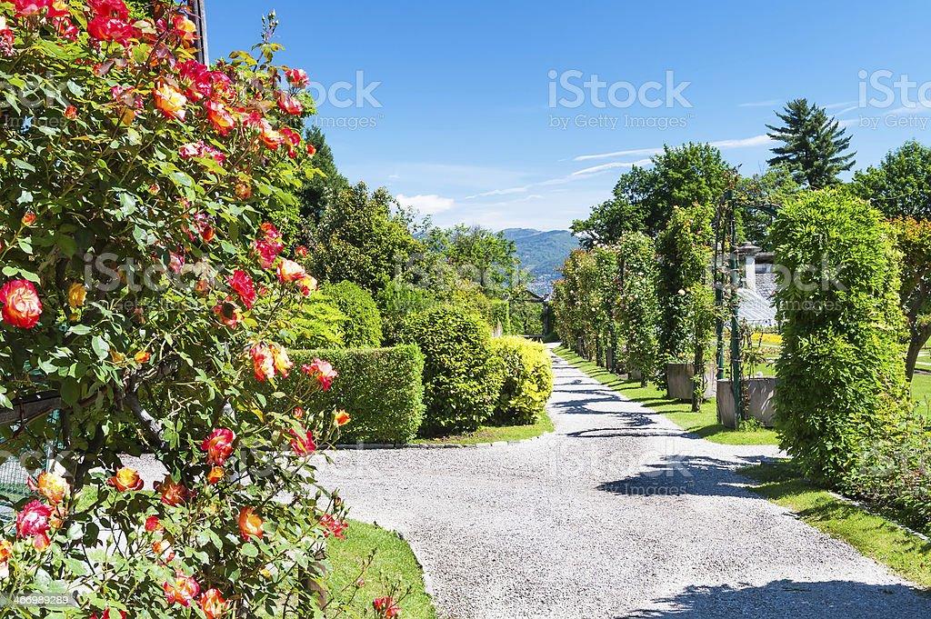 Public garden of Villa Taranto in Italy stock photo