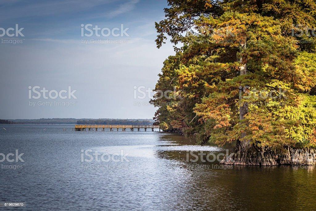 Public Jetty Reelfoot Lake Hornbeak Tennessee stock photo