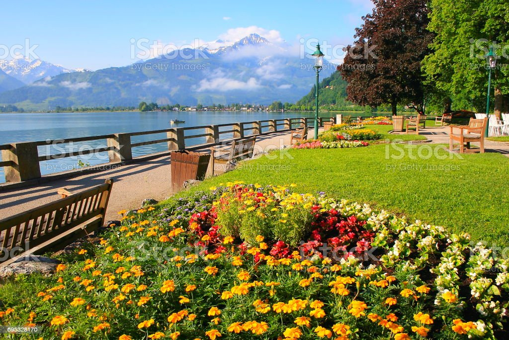 Public park at springtime, garden flowerbed in Zell am See, valley and Mountain range landscape, Tirol in Austrian Salzburger land, Austria stock photo
