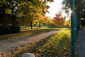 A picture of a public park in the autumn with the sun almost setting.