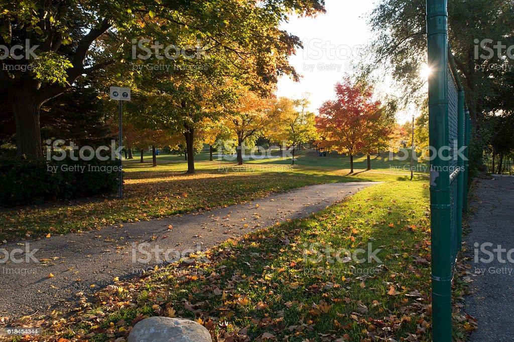 Public Park in the Autumn stock photo