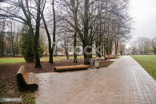 Public park in the city center. Modern wooden benches next to the walkway. High-quality photo