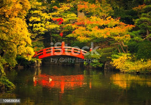 japanese garden red bridge and pond, public park in tokyo