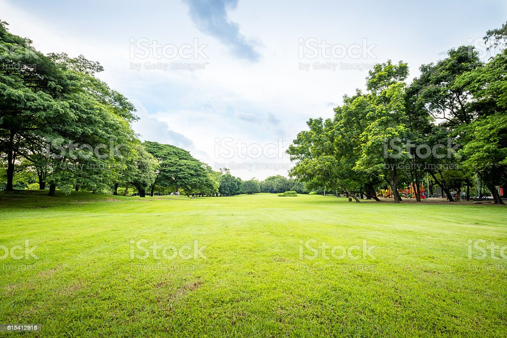 Public park landscape stock photo