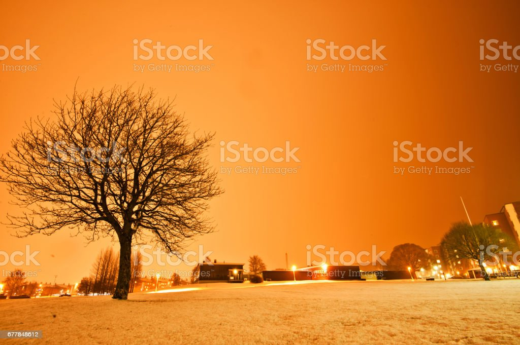 Public Park on A Winter Night royalty-free stock photo