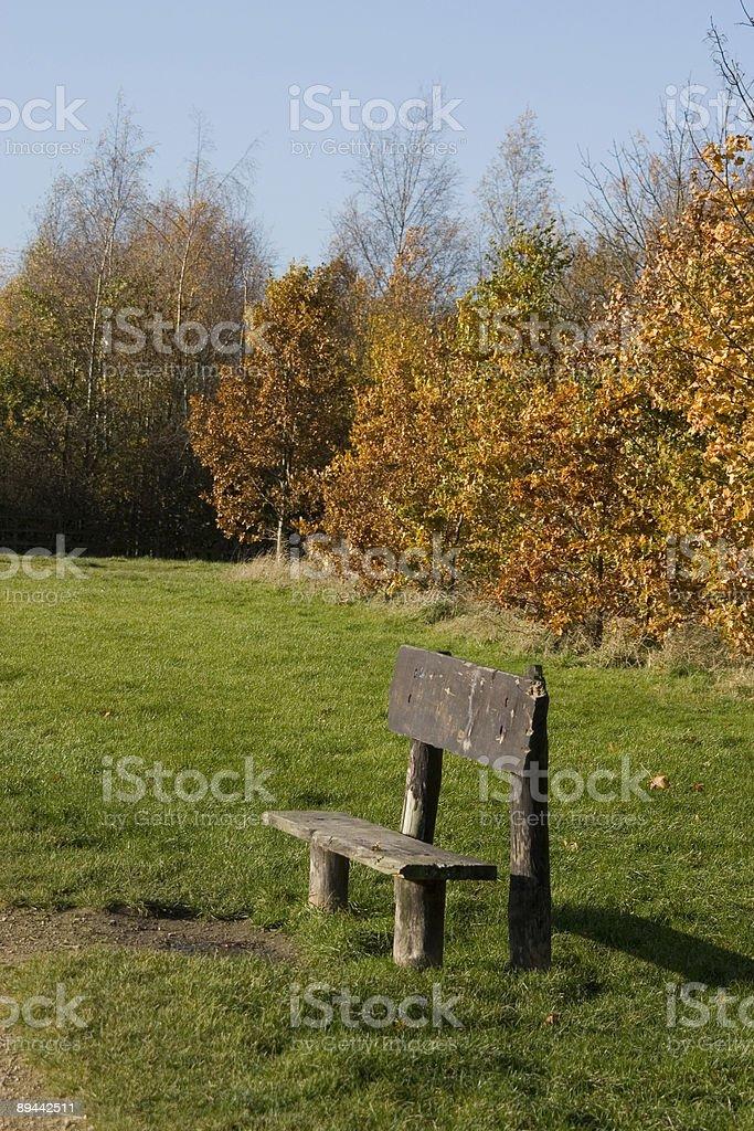 Sedile pubblico con autunno sfondo foto stock royalty-free