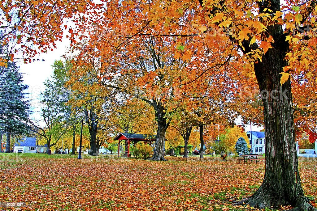 Public Town Park in the Autumn royalty-free stock photo
