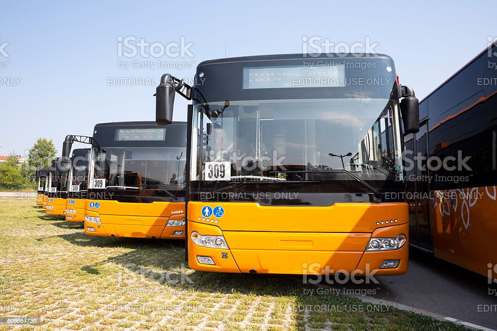 Public transportation new busses front stock photo