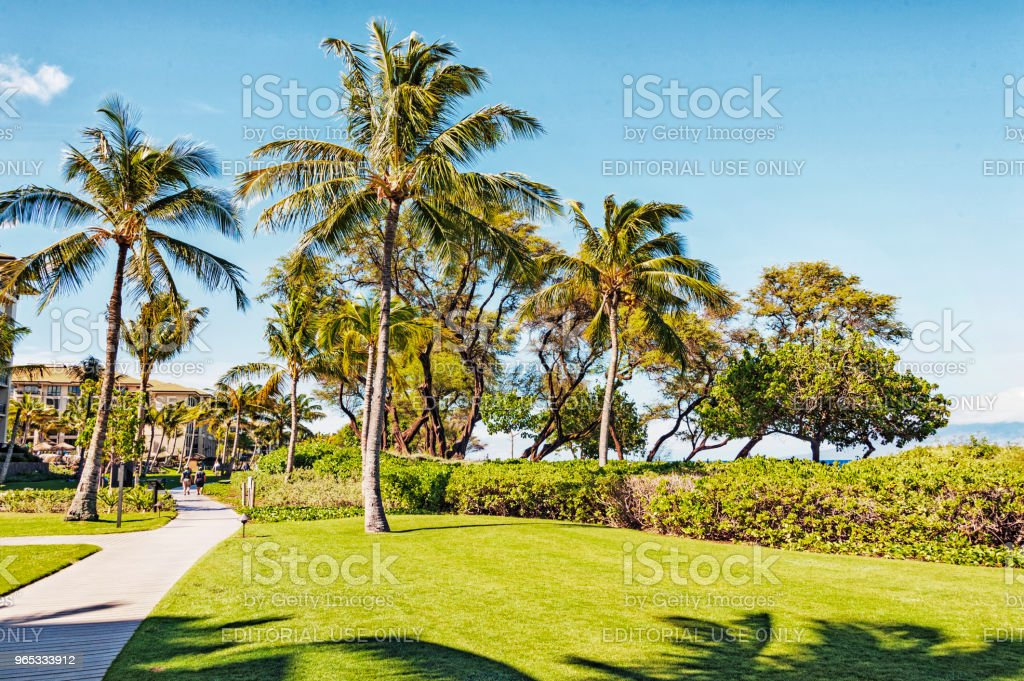 Public Walkway with People along Shoreline of Kaanapali Maui Hawaii royalty-free stock photo
