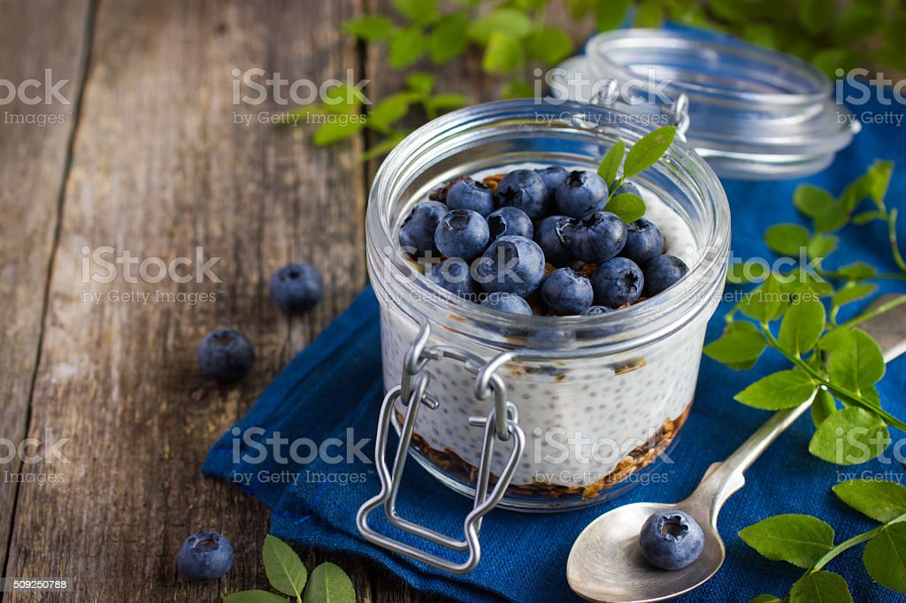 Pudding  with chia seeds, granola andblueberry stock photo