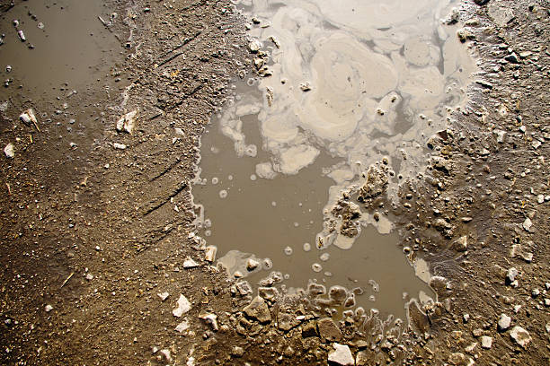 puddle and mud texture - mud stock photos and pictures