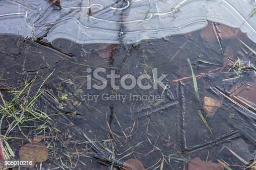 Puddle covered with fresh ice, winter abstract background, texture of ice