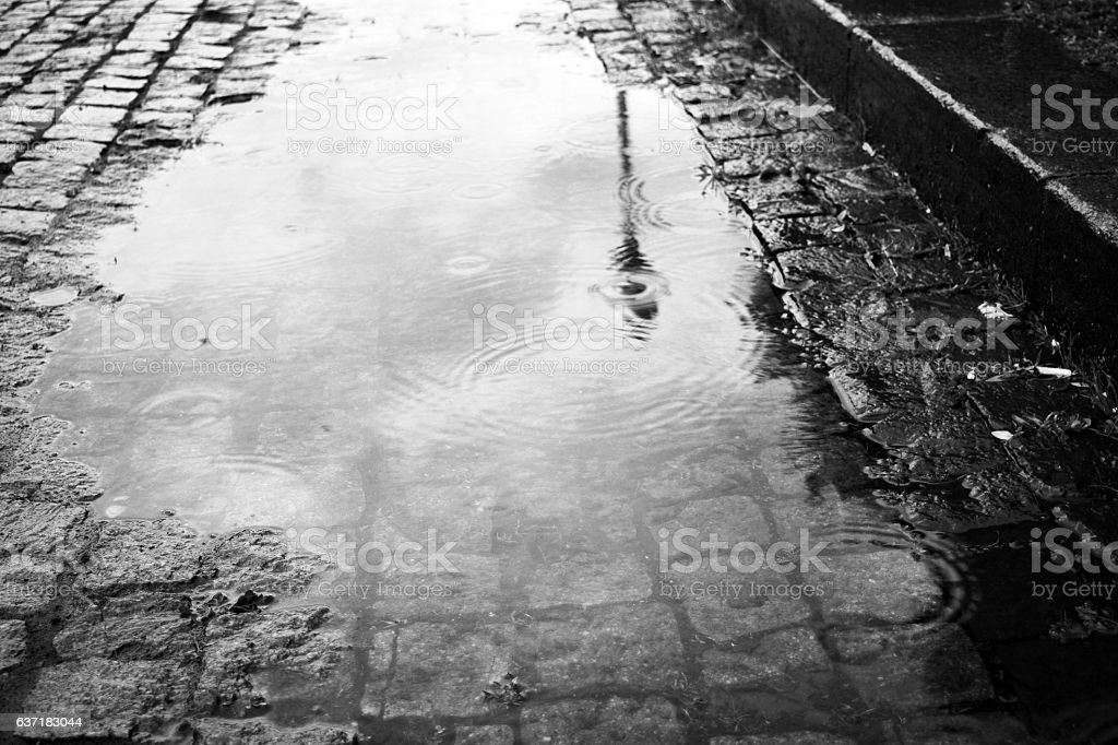 puddle of rain in park stock photo