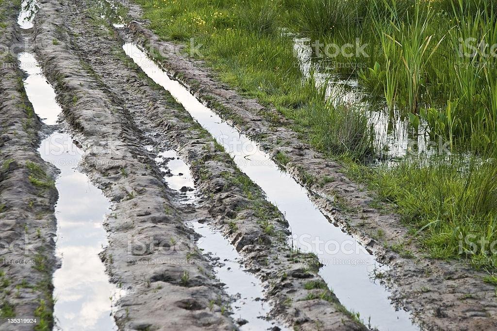 puddle stock photo