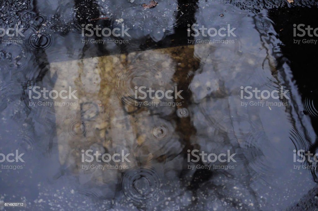 Puddle reflecting royalty-free stock photo