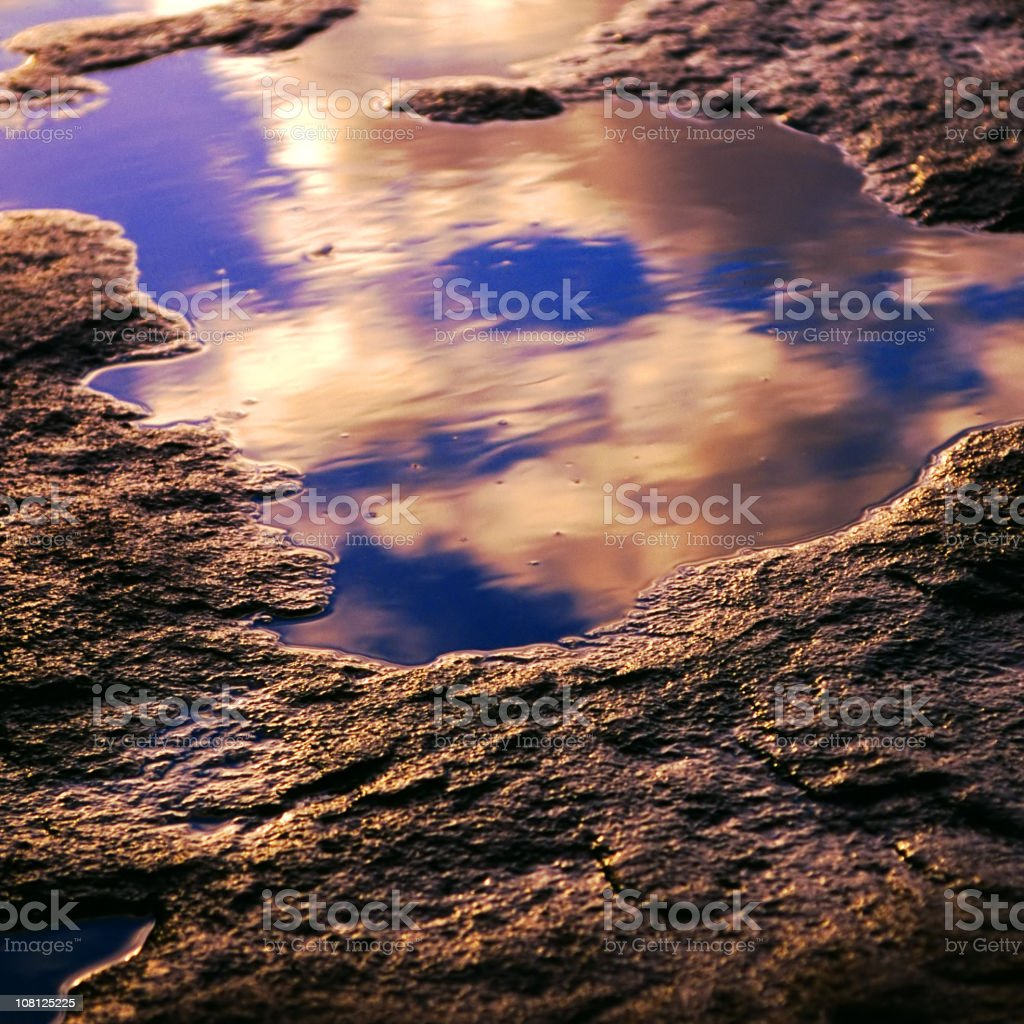 Puddle reflections royalty-free stock photo
