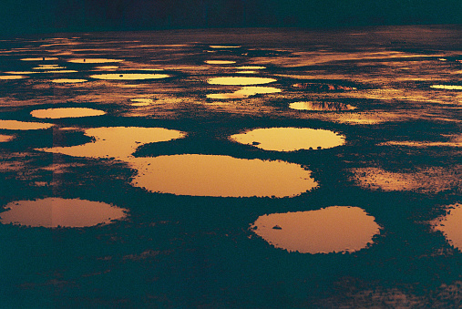 Glowing puddles of rainwater at sunset, reflecting the glow of the sun, 35mm lomography redscale film.