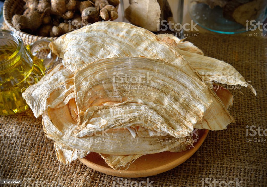 Pueraria mirifica or White Kwao Krua stock photo