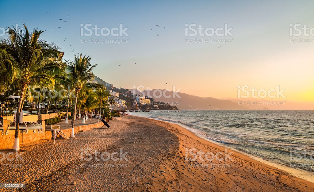Puerto Vallarta sunset and palms - Puerto Vallarta, Jalisco, Mexico stock photo
