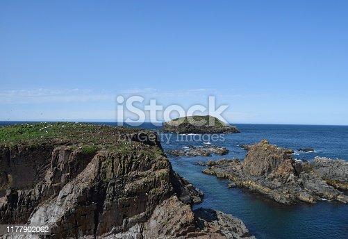 coastal landscape at the Puffin Site in Elliston, Bonavista Peninsula; Newfoundland and Labrador Canada