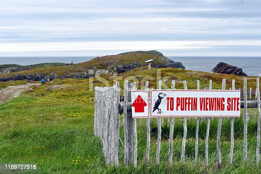 Puffin site sign near cliffs by Atlantic Ocean