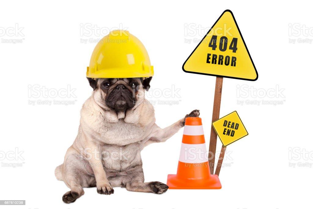 pug hond met gele constructor veiligheidshelm en kegel en 404 fout en doodlopende straat teken op houten paal foto
