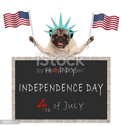 istock pug puppy dog with American flag and statue of liberty crown, behind blackboard with text happy 4th of July and independence day 806516074