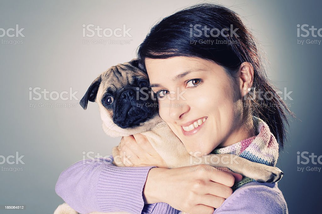 Pug puppy royalty-free stock photo