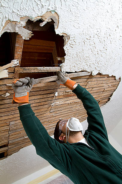 Pull Ceiling Lathe a young male pulls down plaster ceiling lathe with his hands. renovation. shot from below. plaster ceiling design stock pictures, royalty-free photos & images