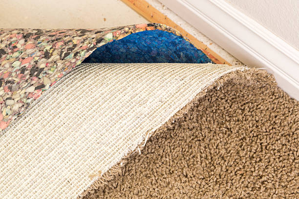 Pulled Back Carpet Flooring and Padding In Room – Foto